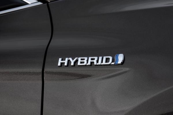 Hibridek 1