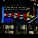 Koszonom Kampany Fenyfestes 19